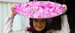 جشنواره گلابگیری | آمیختهای از تاریخ و فرهنگ ایران