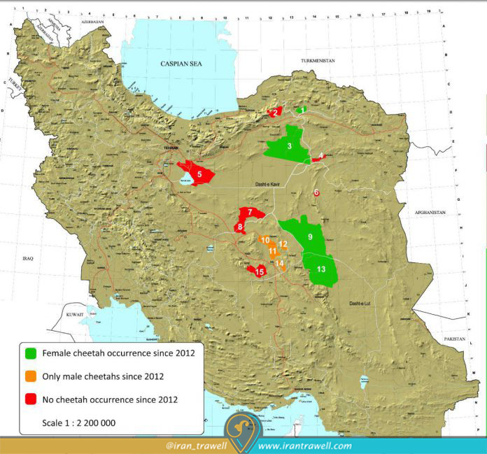 Persian Cheetah Habitat until 2017
