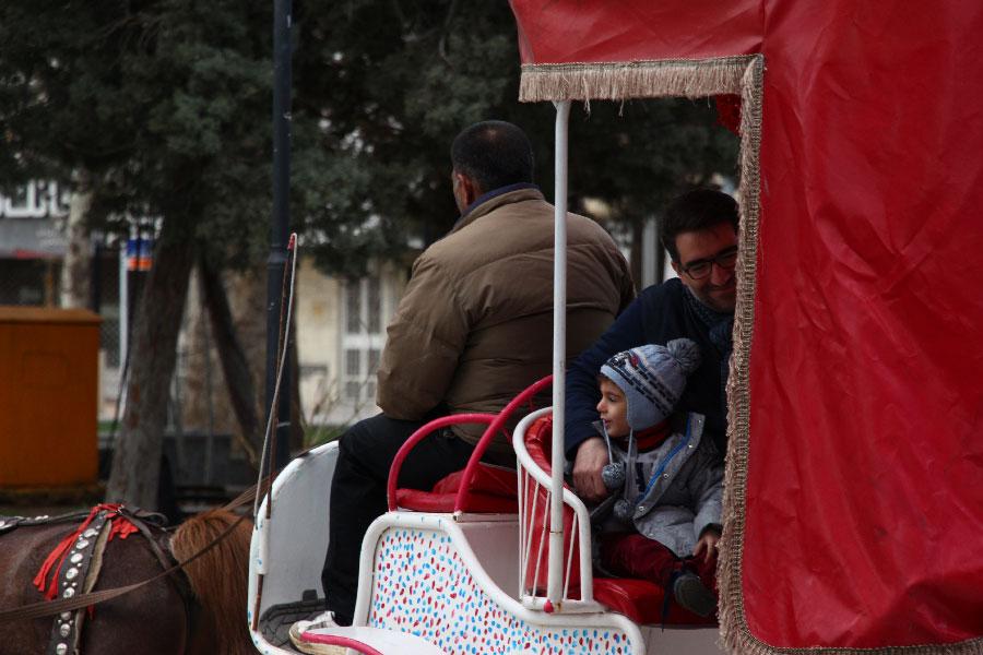 درشکه های گردشگری در قزوین